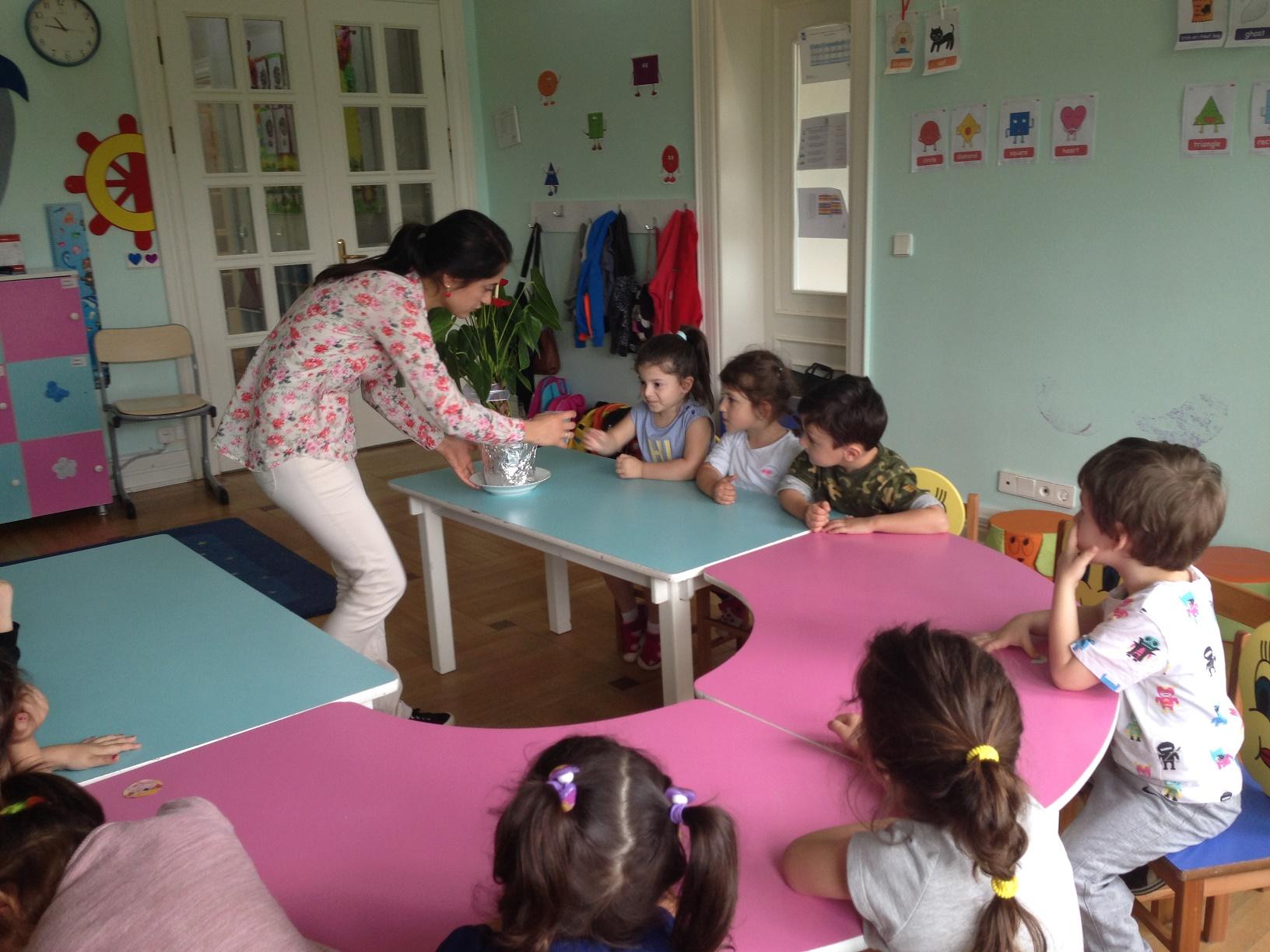 Yunuslar Sınıfı 3-4 Yaş  Fen ve Doğa Etkinliği