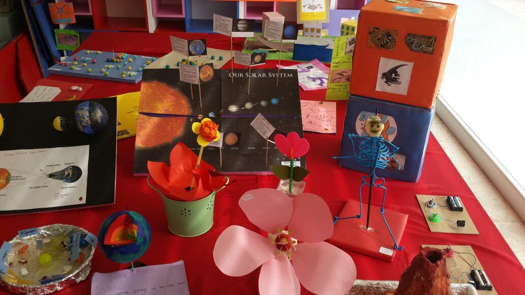 Bilim Şenliği Projeleri